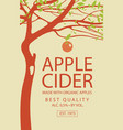 cider label with apple tree in retro style vector image vector image