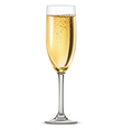 Glass of champagne vector image vector image