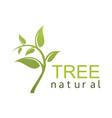 green tree natural logo vector image vector image