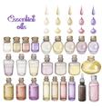 Watercolor essential oils vector image