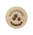black pepper emblem with hand drawn peppercorns vector image vector image