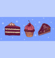 chocolate and cupcake with cherries piece cake vector image vector image