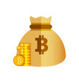 crypto currency bitcoin concept vector image vector image