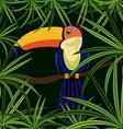 Jungle design vector image