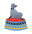 sealion cartoon animal icon vector image vector image
