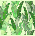seamless pattern with palm banana leaf and plants vector image vector image