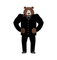 bear boss grizzly businessman in business suit vector image vector image