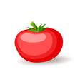 big red tomatoe icon isolated fresh vegetables vector image vector image