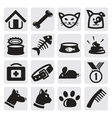 dogs and cats set vector image