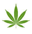 marijuana or cannabis leaf icon logo template vector image