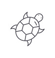 turtle line icon concept turtle linear vector image vector image