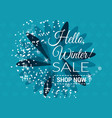winter sale text in winter vector image