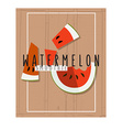 colorful of watermelon slices in flat design vector image