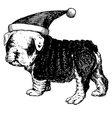 Christmas puppy bulldog 1 vector image vector image