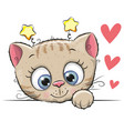 cute cartoon kitten vector image vector image
