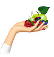 female hand holding berries and fruits on the vector image vector image