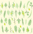 seamless pattern with leaf botanical floral vector image vector image