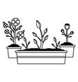 tools decoration gardening flat design vector image vector image
