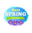 best spring big sale advertisement label crocus vector image vector image