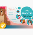 dog grooming salon poster vector image vector image