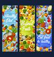 exotic fruits tropical berries detox diet food vector image vector image