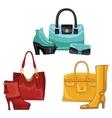Fashionable colored womens boots shoeshandbags vector image