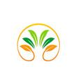 green leaf ecology beauty organic logo vector image