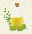 Olive oil design vector image vector image