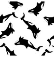 orcas on white background seamless pattern vector image
