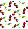 seamless cherries pattern vector image