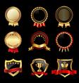 Set of golden badges vector image