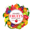 berries and fruits round poster vector image vector image