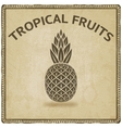 pineapple tropical fruit symbol vector image vector image