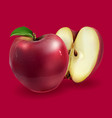 red apples on a background vector image vector image