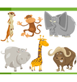 safari animals cartoon set vector image vector image