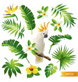 set with tropical leaves flowers and bird vector image vector image