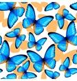 Blue butterflies seamless vector image vector image