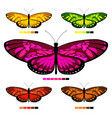 butterfly set 3 vector image