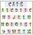 cat alphabet vector image vector image