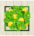 clover leaves and golden coins vector image vector image