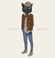 Fashion of cat dressed up in casual city style