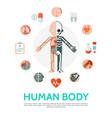 flat human body anatomy round concept vector image vector image