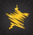 Gold star gloss ribbon vector image vector image