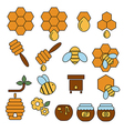 Icon set honey and bee vector image