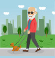 senior blind man with guide dog walking outdoor vector image vector image