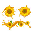 sunflower oil realistic sunflowers oil splashes vector image vector image