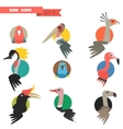 Exotic tropical bird set with flat design vector image