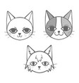 3 cats doodle vector image vector image