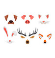 animal faces set with ears and noses isolated
