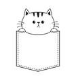 cat in pocket holding hands doodle contour vector image
